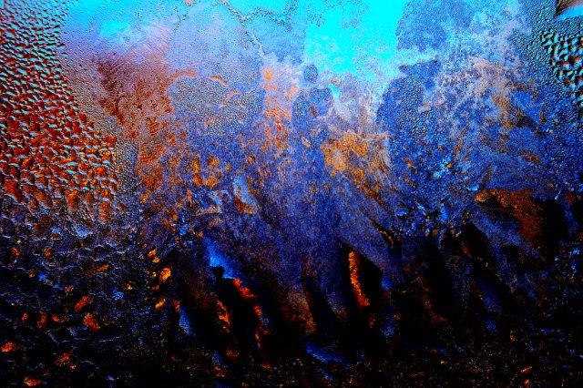 Priscilla Dale Jones - Abstracts - Life Forms - Seize the Fire - 2014
